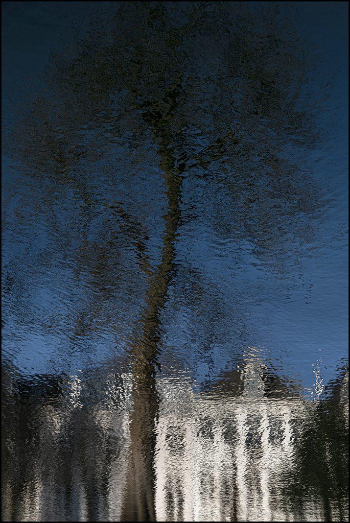 Rflectie van een boom in de gracht